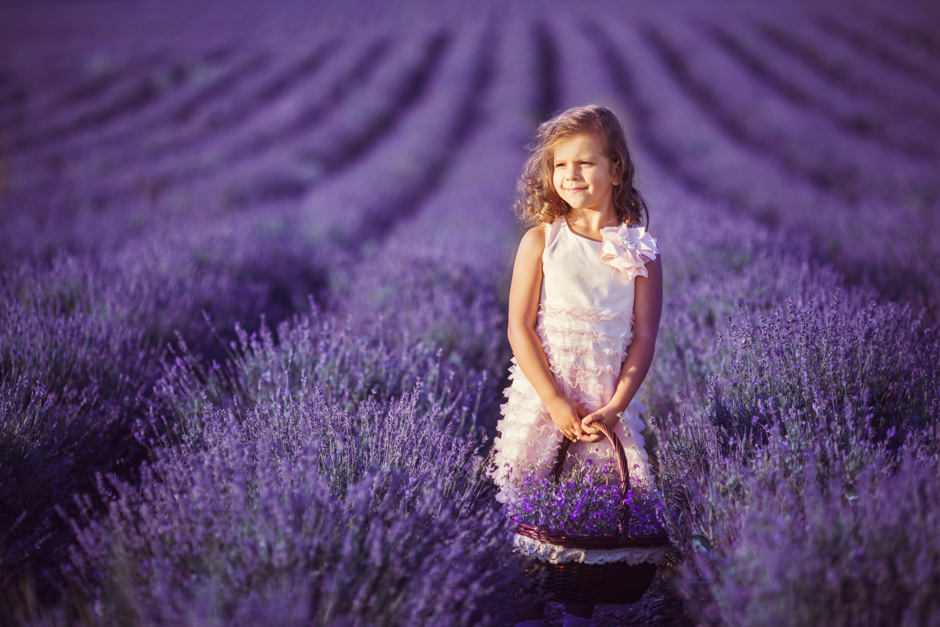The Many Uses of Lovely Lavender