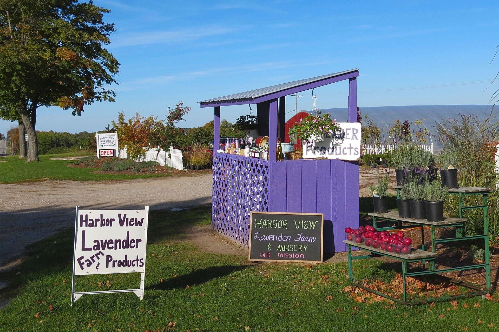Lavender Roadside Stand