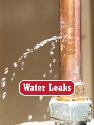 Water Leak Repair Coupons in Tacoma