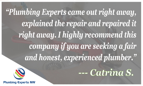 Plumbing Experts Reviews