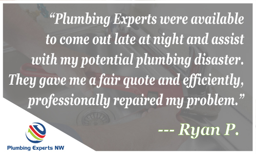 Best Reviewed Plumbers Everett WA