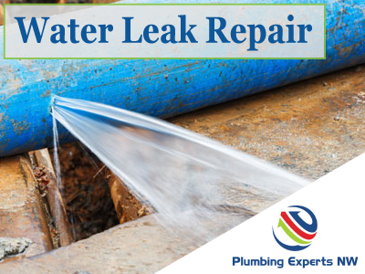 Water Leak Repair Mukilteo