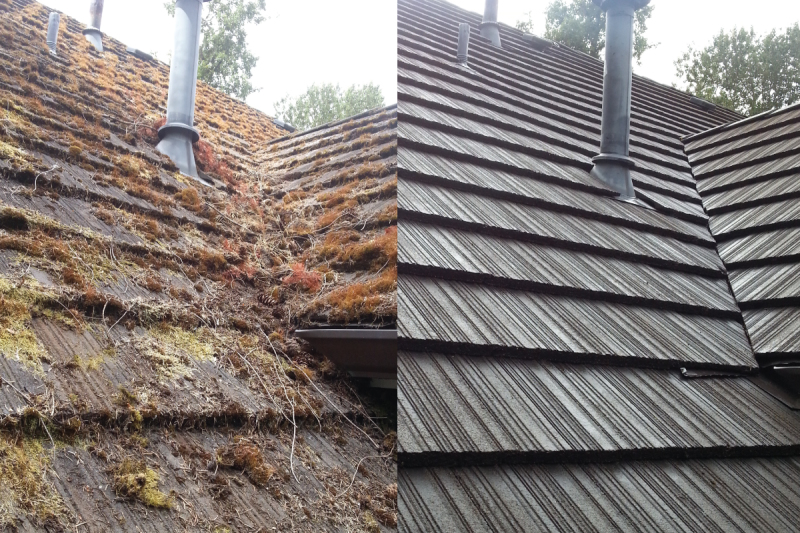 Roof Cleaning Sells Houses Faster and Possibly for More