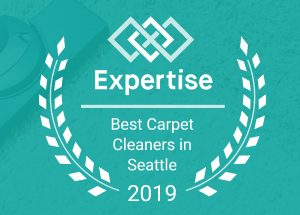 Best Carpet Cleaners