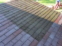 Roof Cleaning near Redmond WA