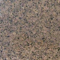 MSI Granite Sample Desert Brown