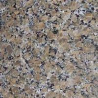 MSI Granite Sample Ferro Gold