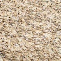 MSI Granite Sample Giallo Ornamental