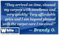 Top Rated Carpet Cleaner
