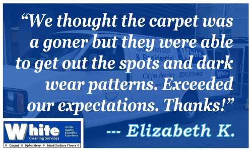 Best Reviews of Carpet Cleaning