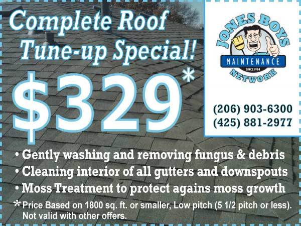 Roof Cleaning Special Offer Bellevue WA