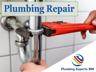Complete Plumbing Repair Services