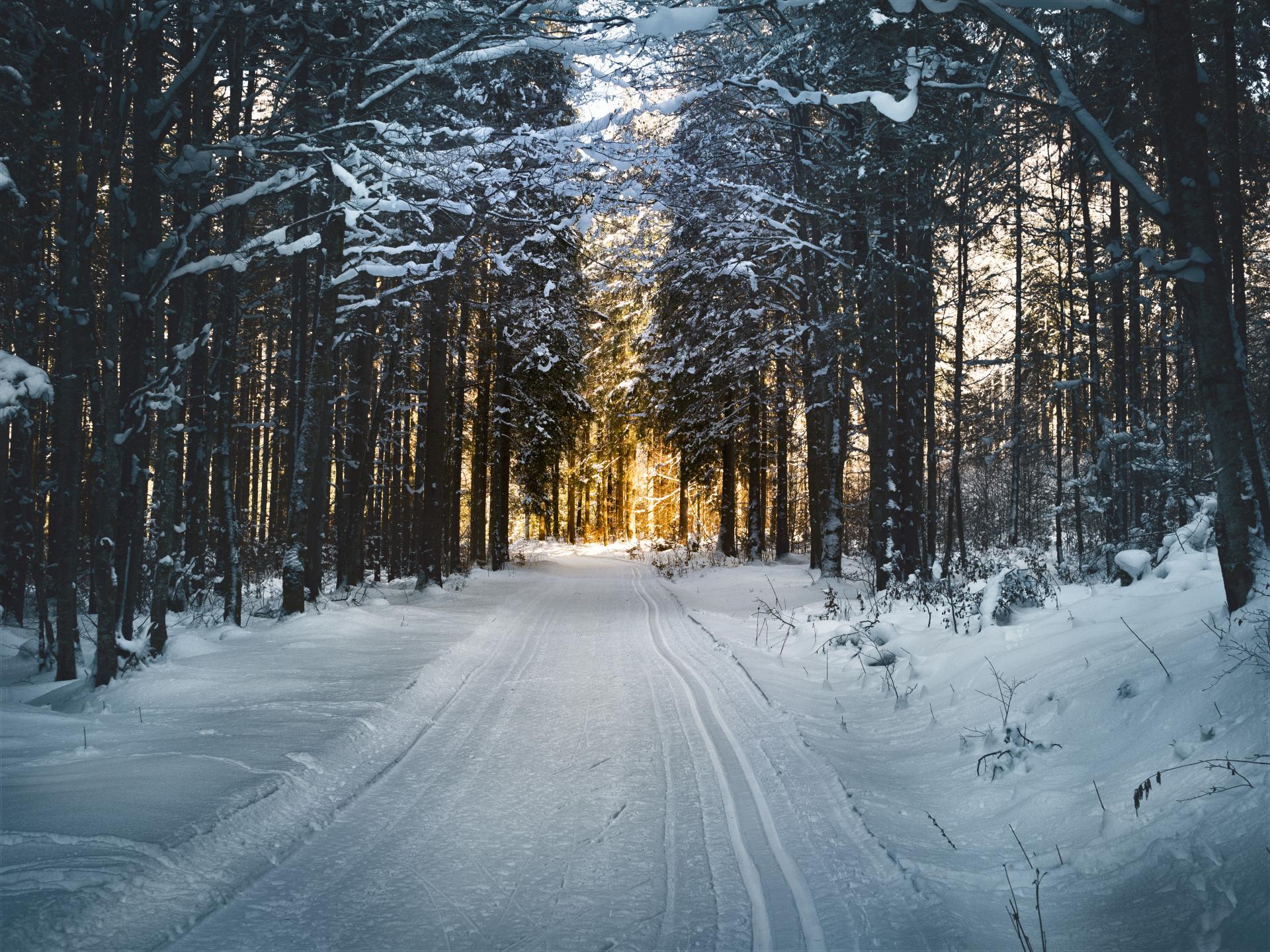 Daily Meditations January 2018