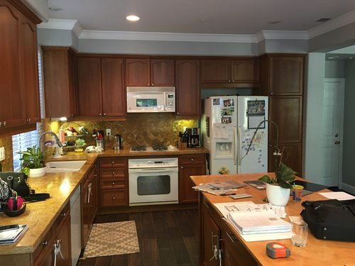 Before - Kitchen remodel Longboat Key, Florida Country Club Shores