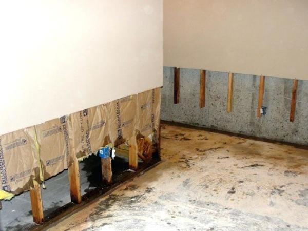Water damage drywall Sarasota and Venice Florida. Remove mold born drywall and sheetrock in Sarasota and Venice FL