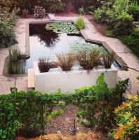 Milliron -aquaculture pond