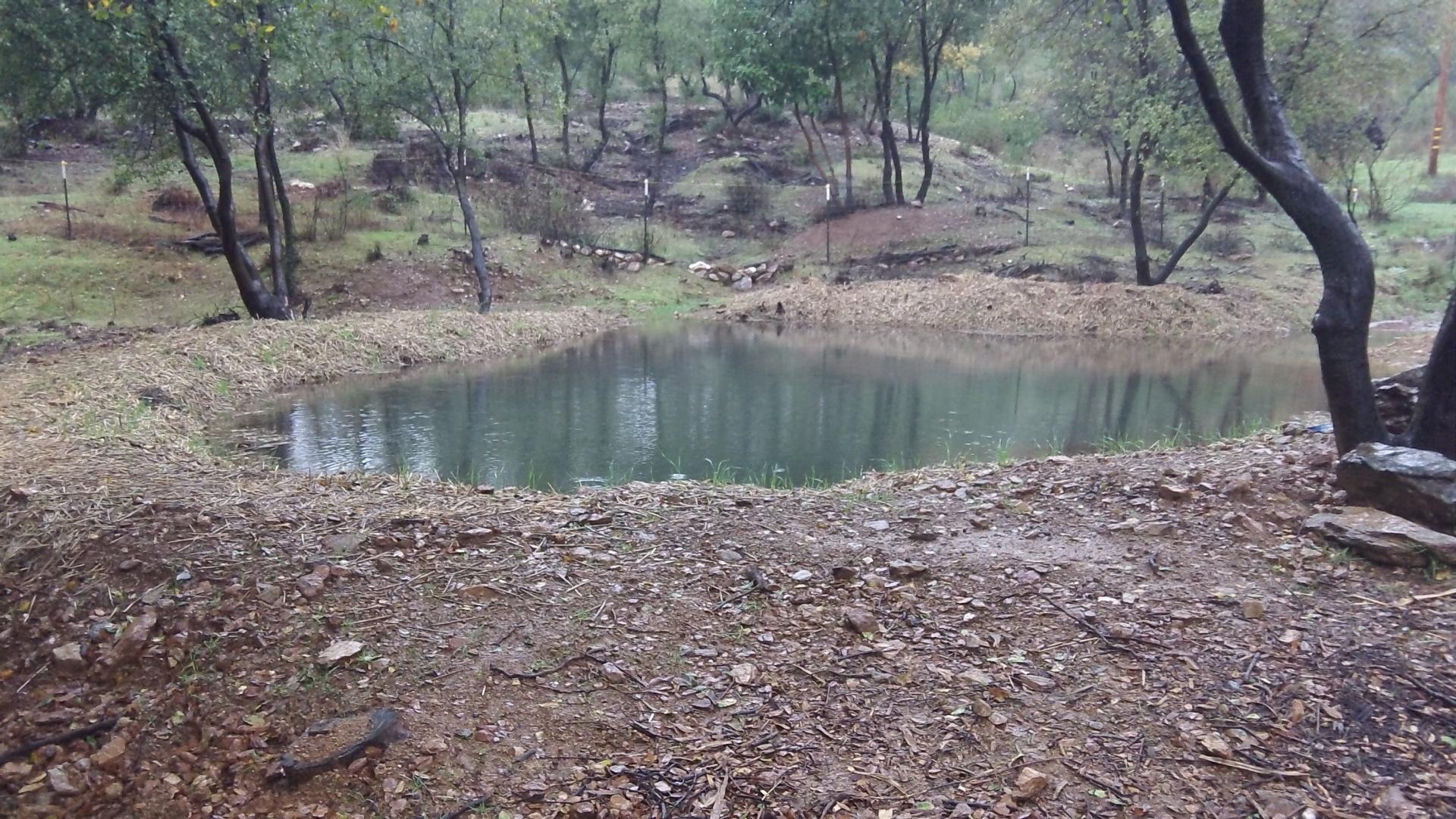 Miller -stormwater retenetion basin