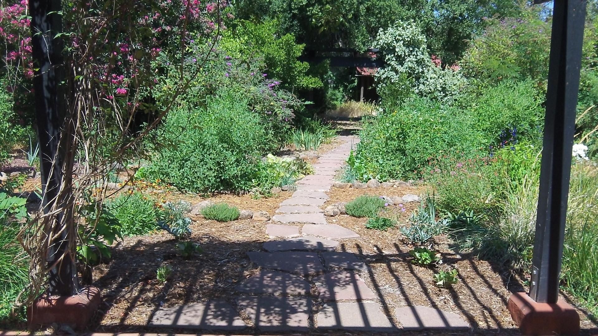 Skaggs -garden after