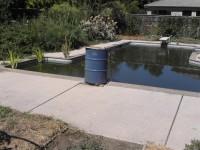 Pool to Pond -2009