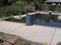 Pool to Pond -2009