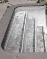 Pool to Pond -steps 2011