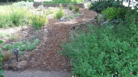 Foster -gardens