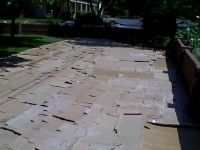 Nillson -cardboard layer of sheet mulch