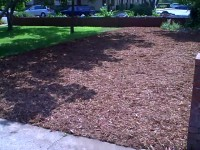 sheet mulch example -step 3