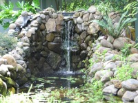 Ladwig -pond waterfall