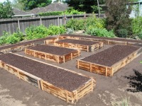 Ladwig -cedar vegetable garden boxes