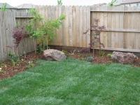 Scott -corner yard after