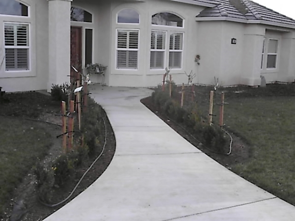 Coots -front view landscape before