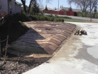 sheet mulch example -step 2