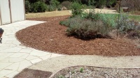 Naylor -sheet mulch 4
