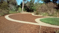 Naylor -sheet mulch 2