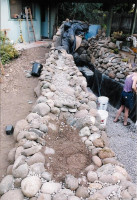 Ladwig -bog construction
