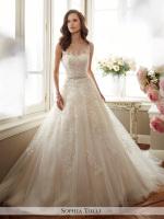 Sheer hi-neck boat neck lace tulle ballgown bridal dress