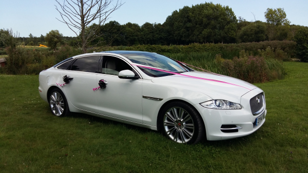 White Jaguar XJL