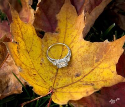 Wedding Engagement Photography Burlington Oakville Spencer Smith