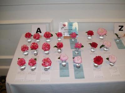 Augusta Camellia Show