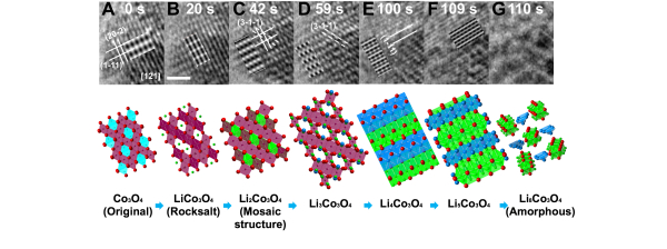Dynamic Imaging of Metastable Reaction Pathways in Lithiated Metal Oxide Electrodes