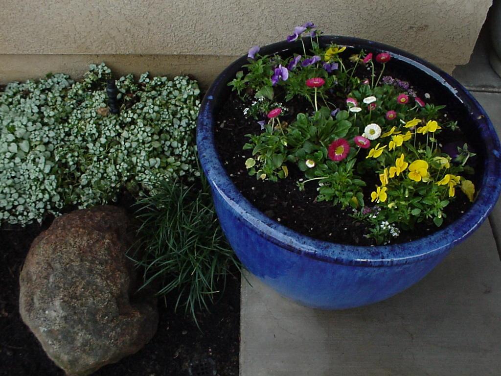 Planter Example 5