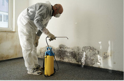Mold Remediations
