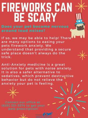 Firework Anxiety