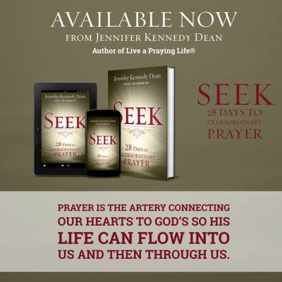 Seek by Jennifer Kennedy Dean (New Hope)