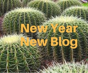 Welcome to my new blog