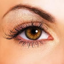 Facts That You Should Know About Professional Eyesight Care