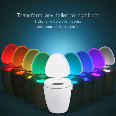 What's the Best Toilet Nightlight?