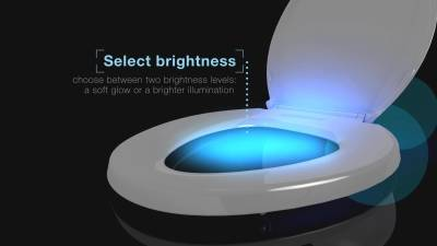 The Need for Motion Activated Toilet Bowl Light
