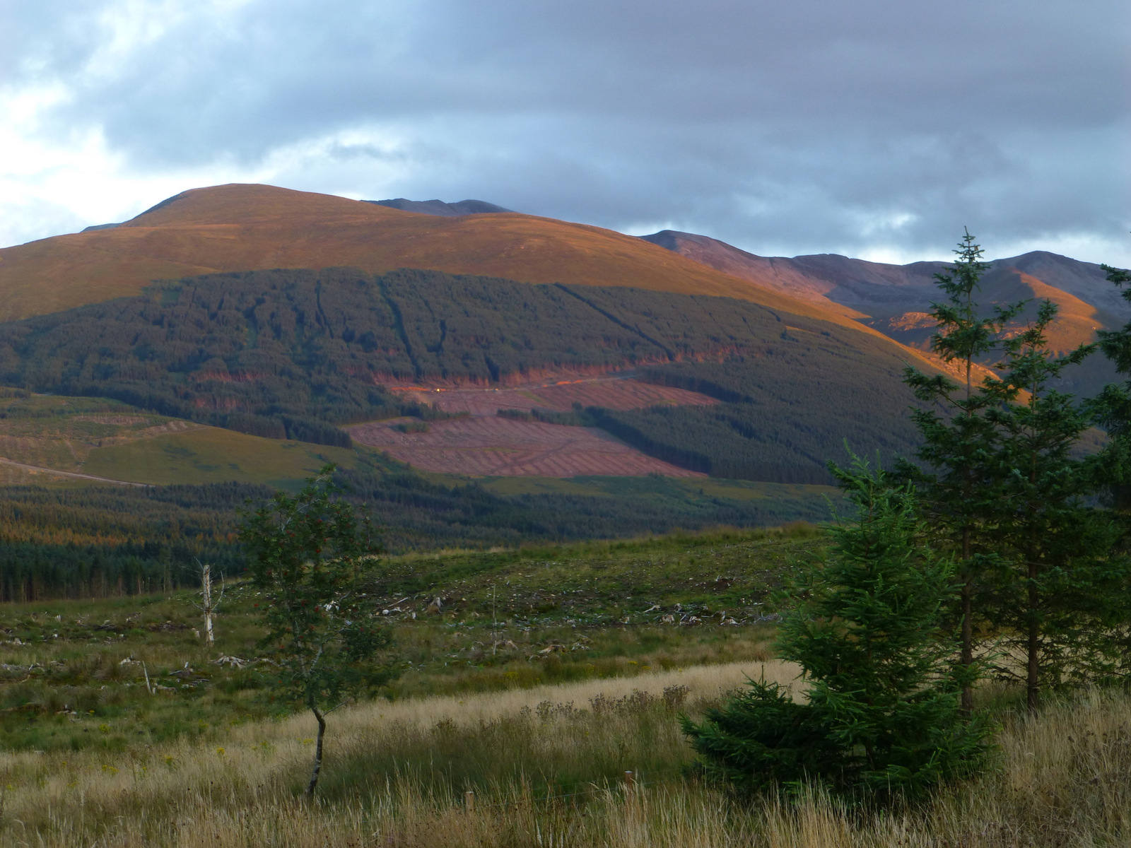 View from the house to the Lairig